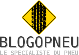 Blogopneu